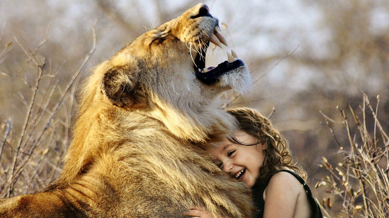 自分と hug